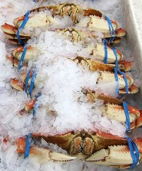 Crab from The Little Fish Company